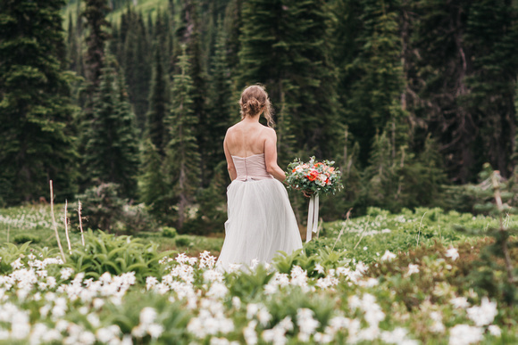 Mount Rainier Bridal Portrait