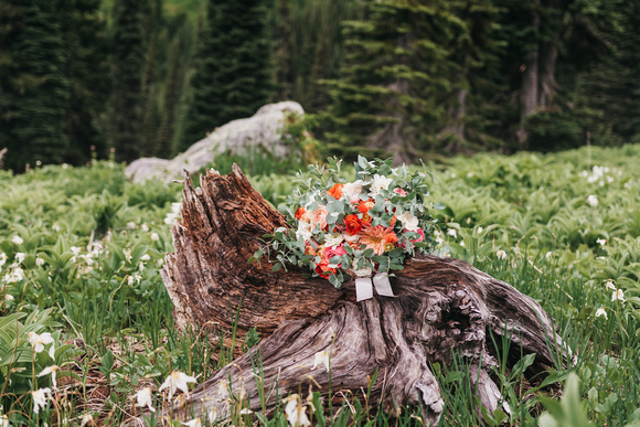 Mount Rainier Bridal Portrait Bouquet by Brenna Burnett Florals